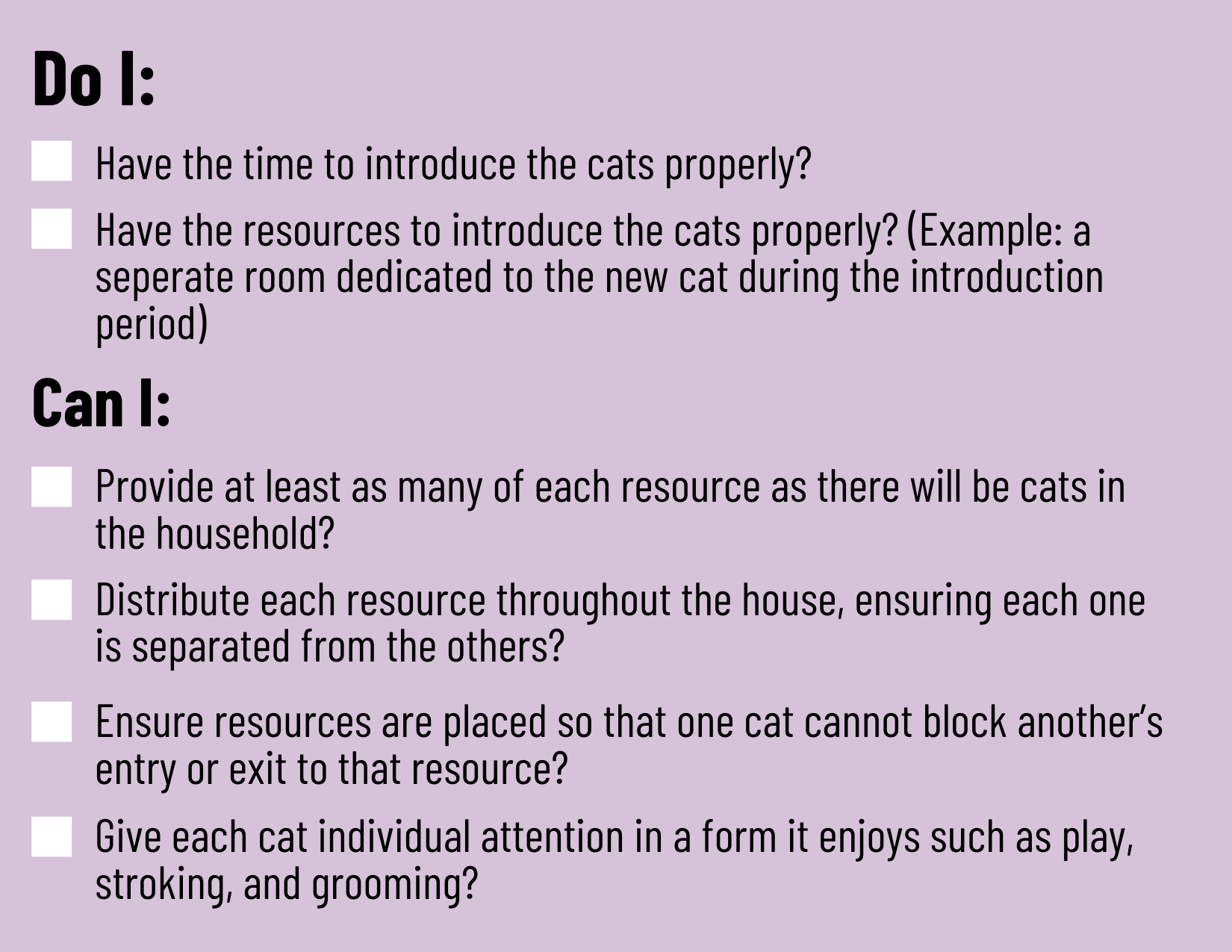 Checklist before getting another cat